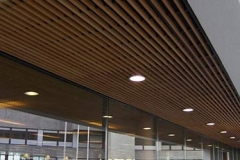 techo lineal con luces